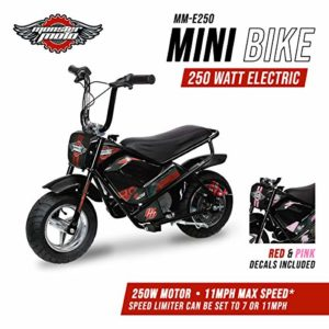 Monster Moto 250 Electric Mini Bike